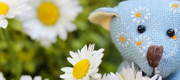 Teddy mit Gänseblümchen